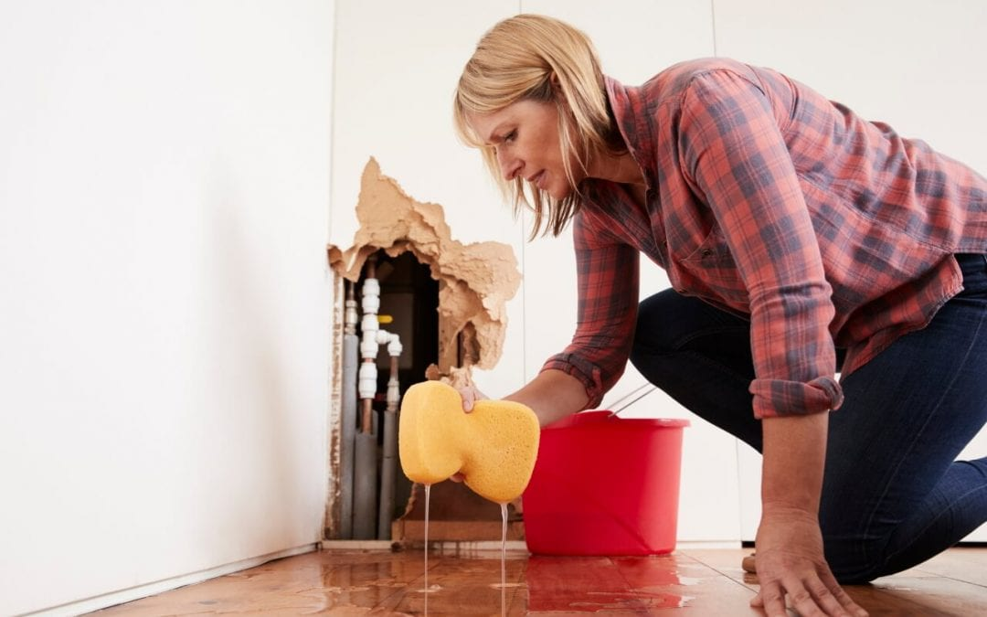 Places to Look for Water Damage in Your Home